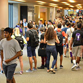 Students flooding the street of University Library during Wildcat Welcome